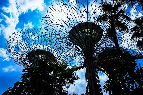 Taken in Singapore