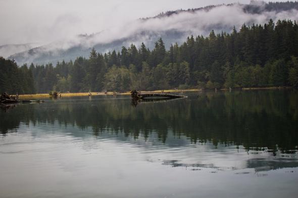 Taken in Port Renfrew, BC, Canada